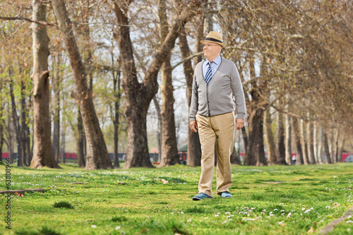 Senior gentleman walking in park