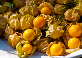 Cape gooseberry or Physalis peruviana L.
