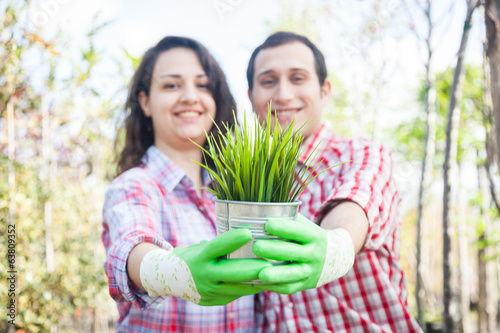 Gardeners Holding Small Plant at Nursery