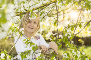 Portrait eines kleinen Mädchens unter einem Kirschbaum