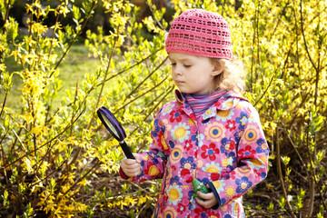 Little girl with magnifying glass exploring laburnum