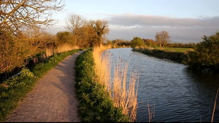 Bridgwater and Taunton Canal Somerset England