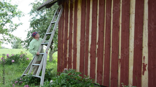 Painter man on ladder paint wooden garden house wall with brush