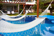 Swimming pool and hammock.