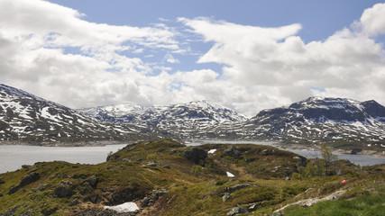 Haukelifjell, Passstrasse, Mittelgebirge, Roldal, Norwegen