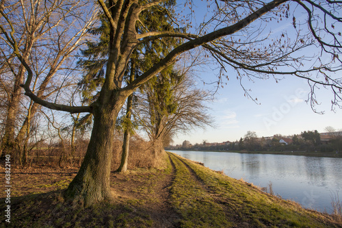 Nature landscape with Elbe