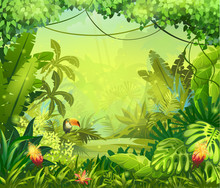 Llustration z kwiatów i dżungli tukan