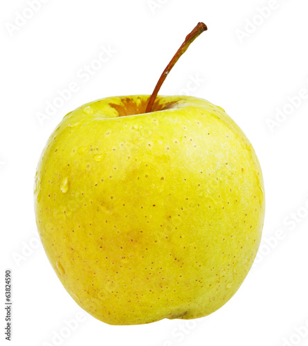 yellow golden delicious apple