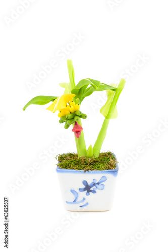 Banana tree plastic