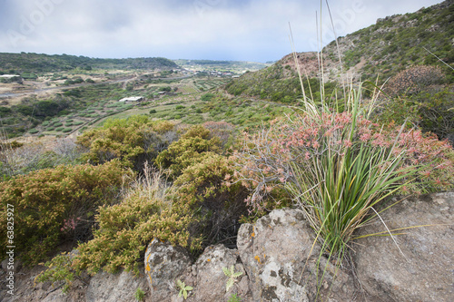 View of tipycal countryside in Pantelleria, Sicily, Italy