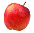 red wealthy apple