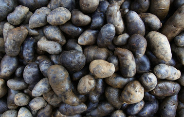 Black Potatoess