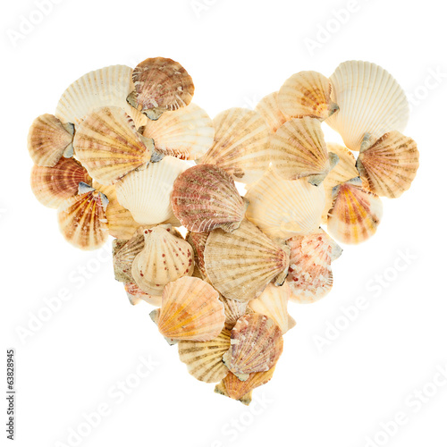 Heart shape made of seashells