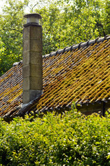 Smokestack on corrugated roof covered in moss of a cottage