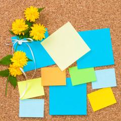 Pinwand, Ideenfindung, Kreativität, bunte Notizzettel