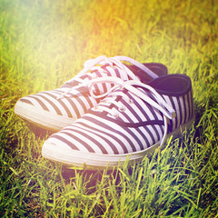 Purple striped canvas shoes in the grass