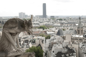Gargoyle at Notre-Dame Cathedral, Paris