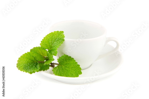 Mint leaflets on a white cup