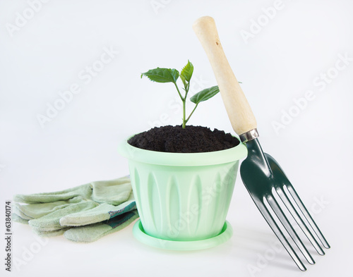 Horticulture and gardening image over white background