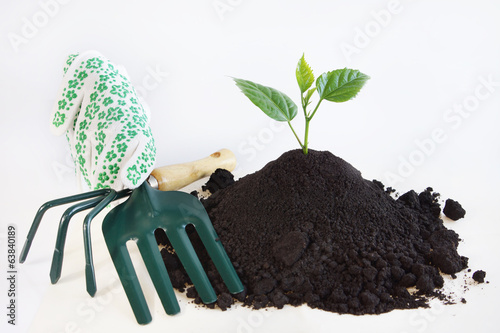 Horticulture concept over white background