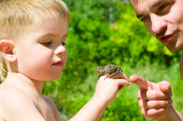 Father and son on nature are considering frog