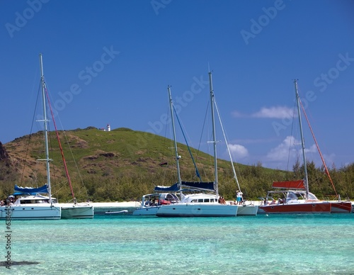 canvas print picture sailing catamaran to a bay