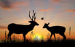 two deers at sunset illustration