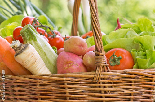 Fresh organic vegetables in wicker basket