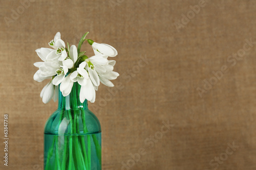Beautiful snowdrops in bottle
