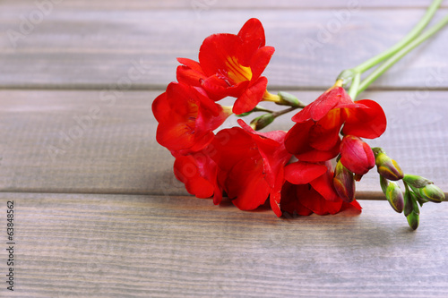 Beautiful freesia flowers, on wooden table