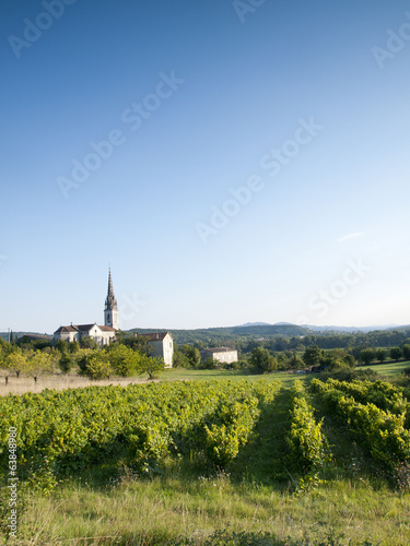 Old church in a French landscape with grape vines