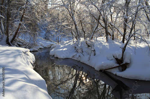 Forest after a snowfall. Forest River