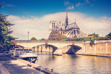 view of the cathedral of Notre Dame and the Seine