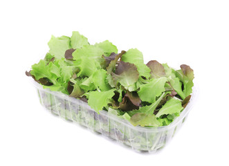 Salad mix in plastic box.