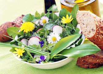 Salat - Frühling