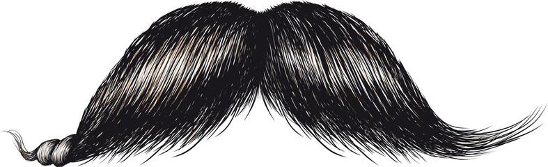 gentlemans mustache