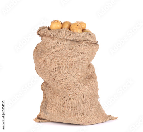Ripe potatoes in burlap sack.
