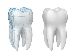 Dents vectorielles 1