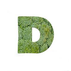 fruits and vegetables - letter D