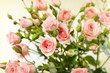Beautiful roses on bright background