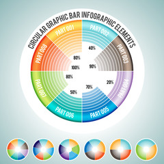 Circular Graphic Bar Infographic Elements