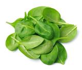 Fototapety Fresh spinach