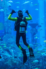 Huge aquarium in Dubai. Diver feeding fishes.