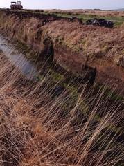County kerry bog landscape