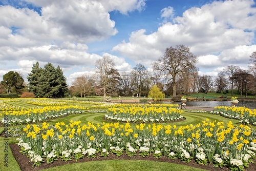 Flower beds with daffodils and primroses near small lake