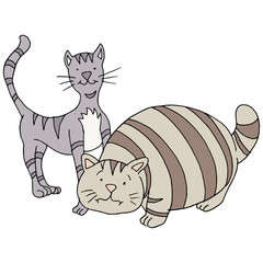 Fat And Skinny Cats