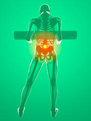 Corpo umano con un peso e dolore alla schiena, ai raggi x