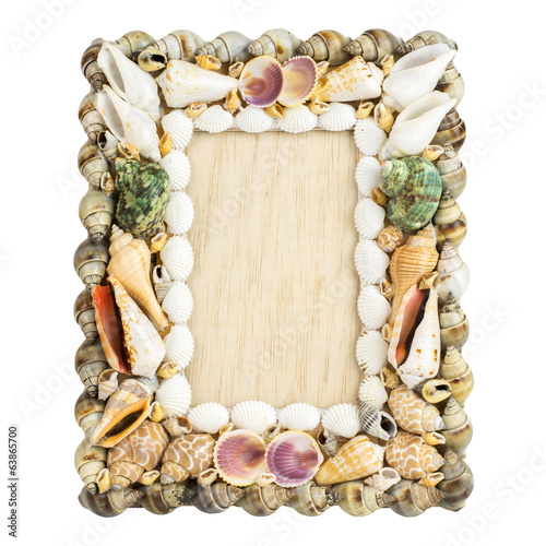 Frame of seashells