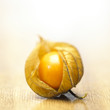canvas print picture - Physalis Frucht Still