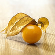 canvas print picture - Physalis Frucht Still 2